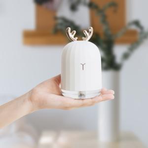 pourquoi utiliser un humidificateur d'air ?