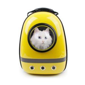 shine, Sac de voyage chien, sac hublot, panier chiot, cage chaton, voyager avec mon chat,