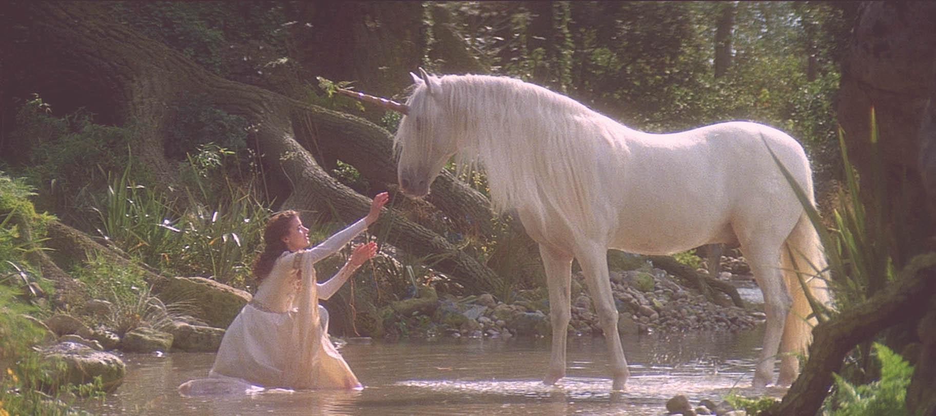 licorne, unicorn, diy licorne, produits licorne, shine